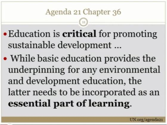 ccs education for all 7