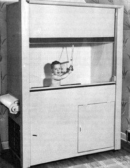 Skinner box 2