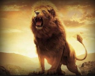 As the Lion Roars_002
